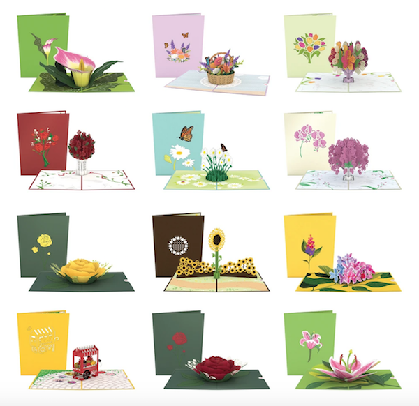 Love Pop Floral Cards