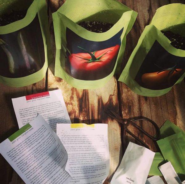 Seed Starter Housewarming Realtor Closing Gift